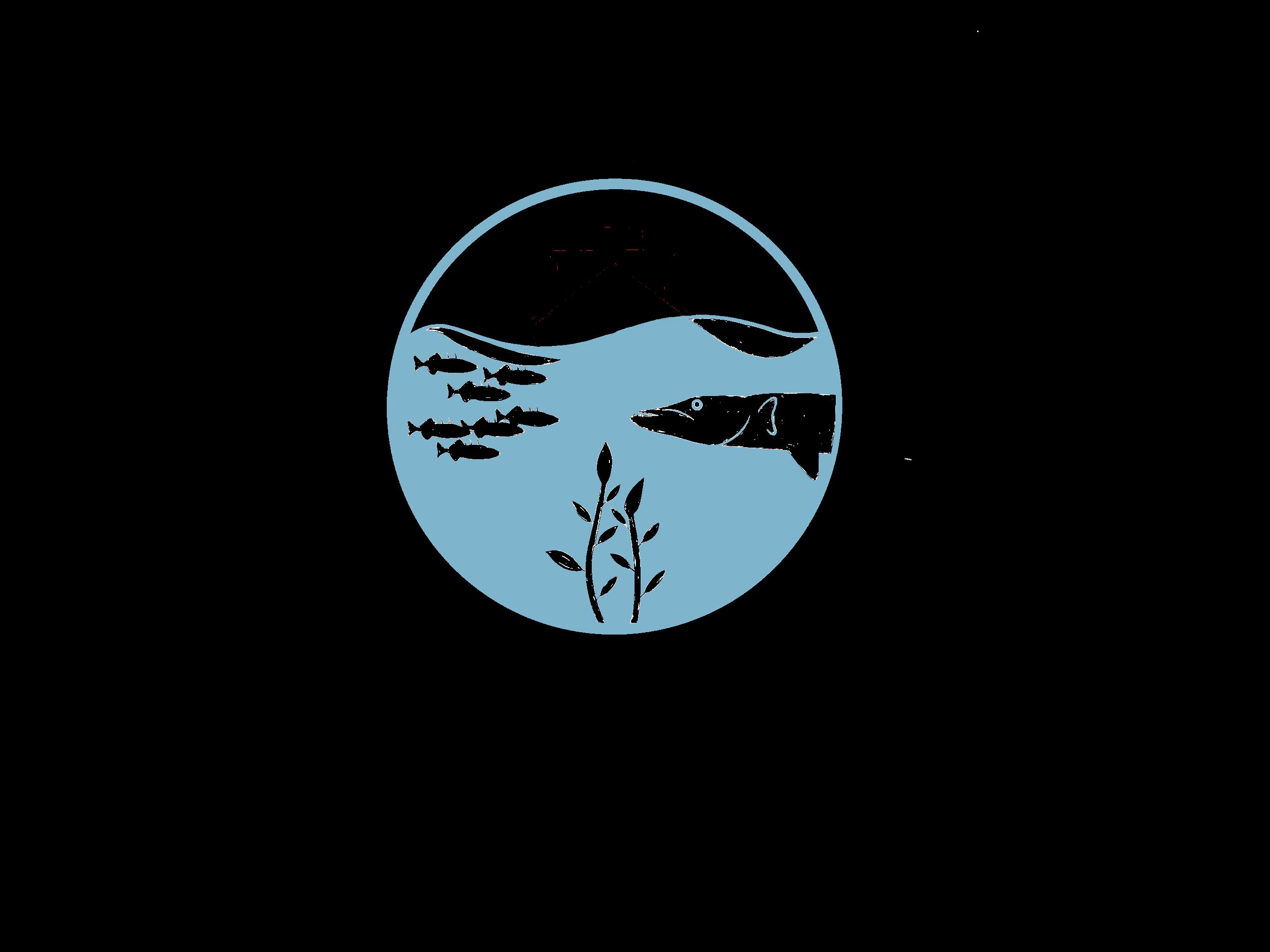 Logo-Zwartebootmettekst
